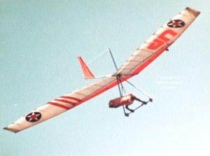 Hang glider in flight