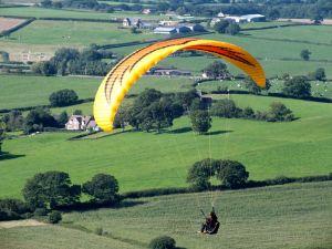 Firebird paraglider