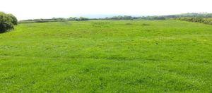 Ringstead emergency bottom landing field in 2017