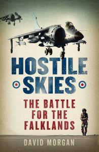 'Hostile Skies' softback book cover