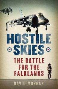 'Hostile Skies' softback book cover
