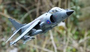 Kinetic 1/48th scale Sea Harrier FRS.1 apparently flying
