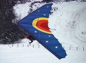 Art based on a hang gliding photo by Leroy Grannis