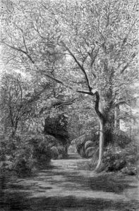 Path through trees and bushes charcoal drawing by Kathleen Mary King, about 1937