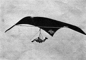 Art based on a photo of the Wasp CB240 semi-cylindrical Rogallo hang glider of 1974-5