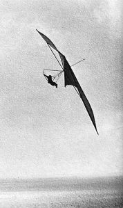 Art based on a photo by Chris Price of Bob Wills flying Price's prototype Swallowtail at Point Fermin