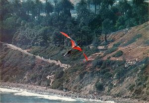 Mike Huetter at Point Fermin, California, by Leroy Grannis