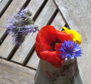 Flowers, July 2019