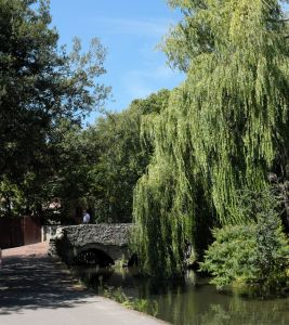 Bridge over the mill stream just north of Place Mill, Christchurch, Dorset, England, in July 2020