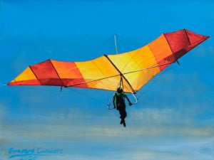 Bennett Delta Wing Kites and Gliders Phoenix VI hang glider