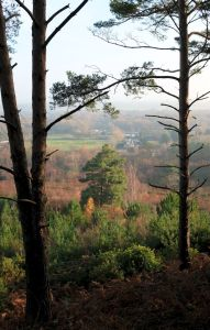 View from east side of St. Catherine's Hill, Christchurch, Dorset