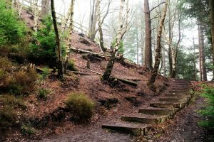 Steps up Ramsdown Hill, Hurn, Dorset, in 2021