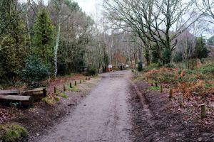 Main path up St. Catherine's Hill, Christchurch, Dorset